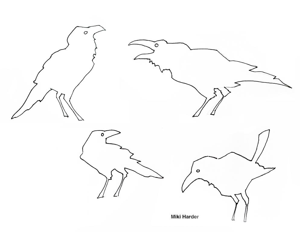 Miki Harder Sketches.jpg