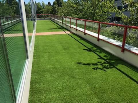Grass on roof installation.jpg