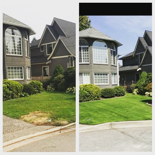 Before and after. When you're looking for landscaping services you want a team you can trust that will do the job effectively and efficiently. Here at Tanner's Turf we pride ourselves on doing the job above satisfaction,so our customers are left knowing they made the right choice with us! #tannersturfservice #tannersturf365green #turfinstallation #landscape #lawndesighn #lawntransformation #environmentlyfriendly