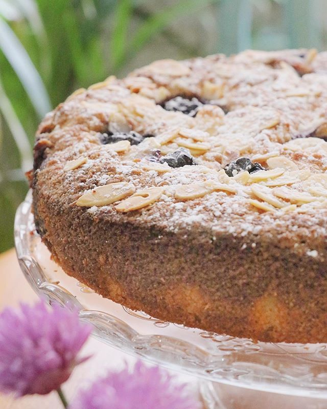 Get ready for this one... A...Blueberry - Lemon - Coconut - Almond - Gluten Free -  E X T R A V A G A N Z A 😉😉 . . . . . . . . . . . . #millyskitchen #coffeeshop #cuparnow #visitscotland #healthyfood #homebaking