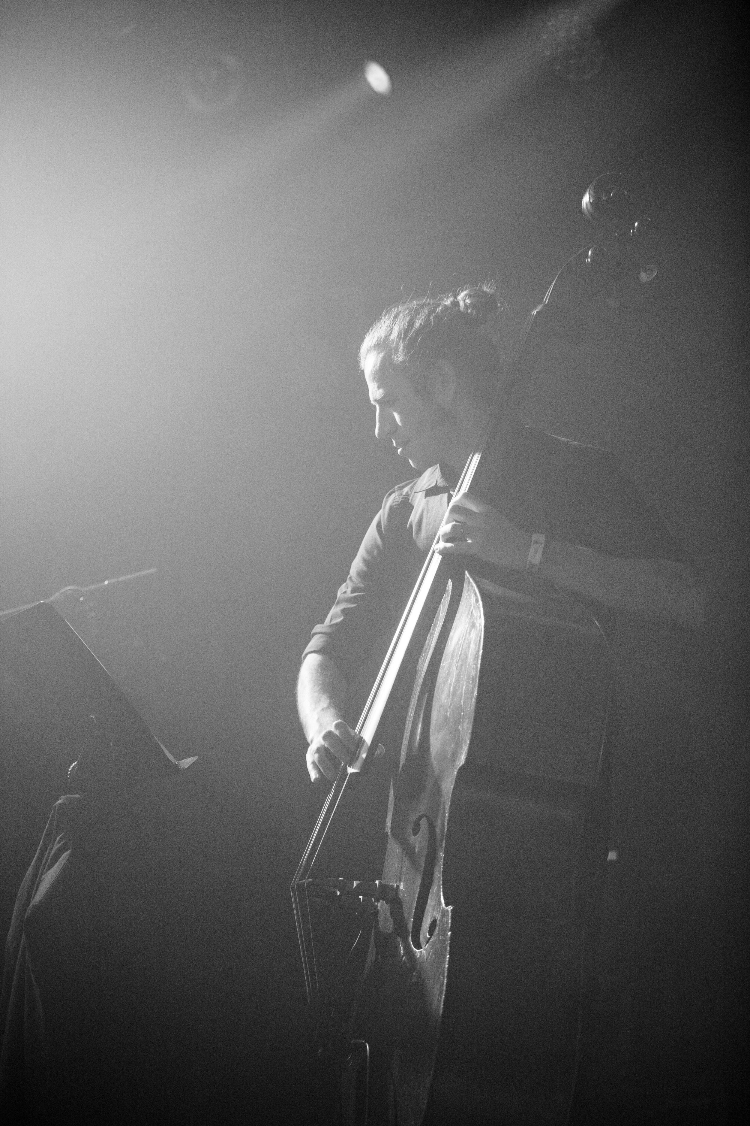 Vintage Band Double Bass.jpg