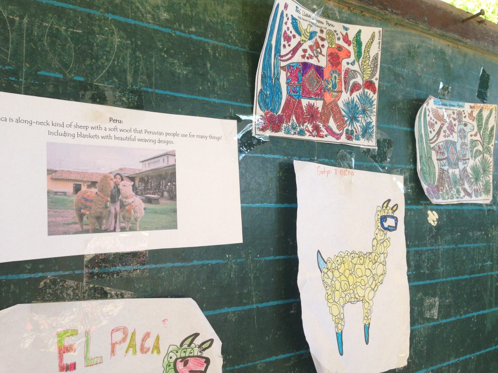 Looking at traditional Peruvian textiles, Agsilab Elementary School's youngest students decorated some adorable alpacas with their own colorful renditions.