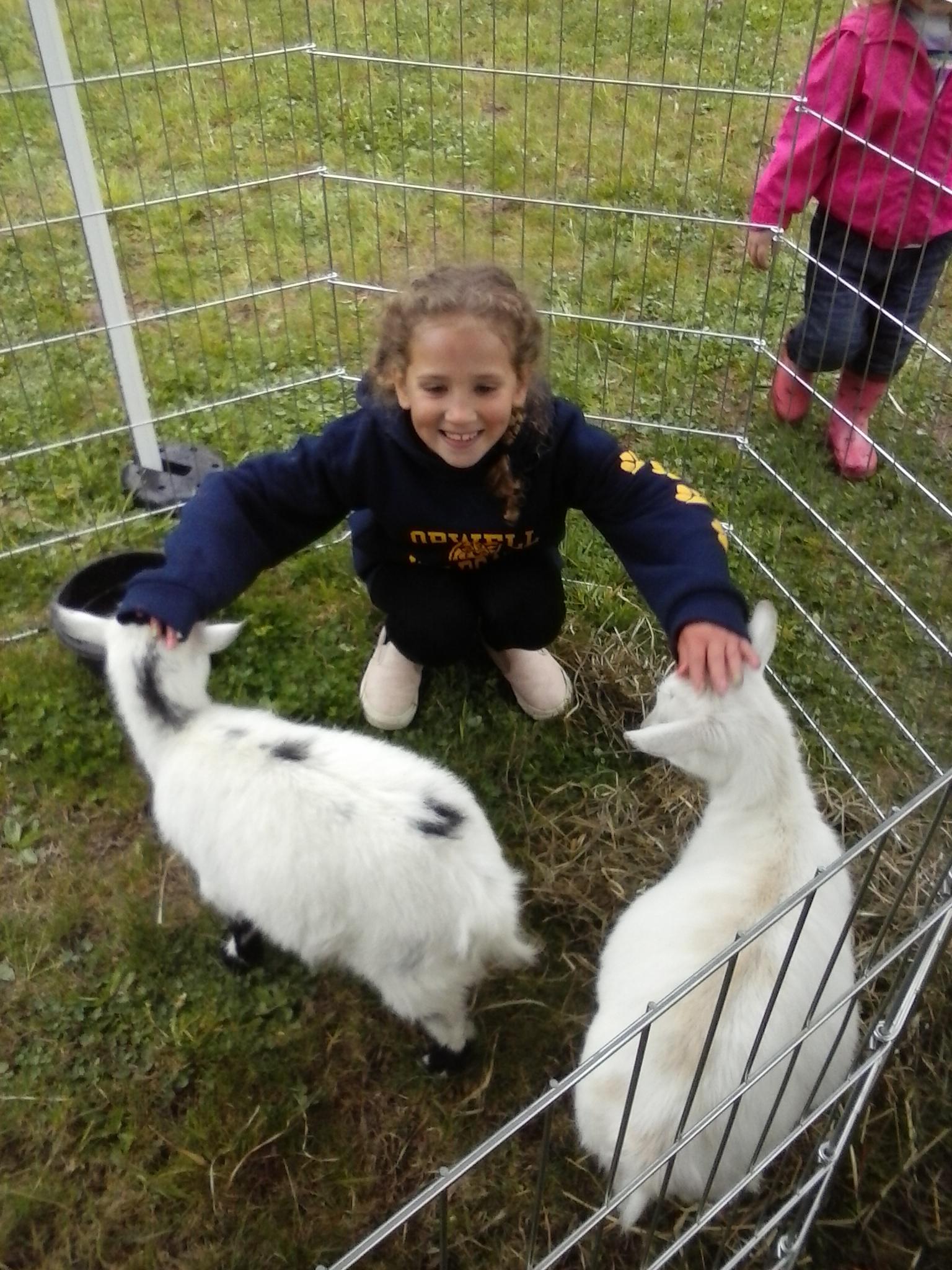 anya-goats-great-hollow-opening.jpg