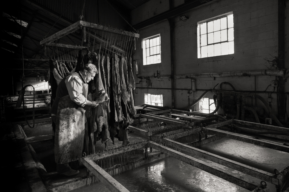 Martin Brady / Leather Worker / Chagford - Martin has a hands-on approach to his craft, visiting tanneries to select the perfect hides. Here, is pictured sampling skins at J&FJ Baker & Co, the UK's last remaining oak-bark tannery, in Colyton, East Devon. Martin hand-stitches his products, which include belts, handbags and dog collars, at his shop in Chagford, in full view of his customers. Martin offers short workshop, where you'll have the chance to produce your own bookmark or key fob