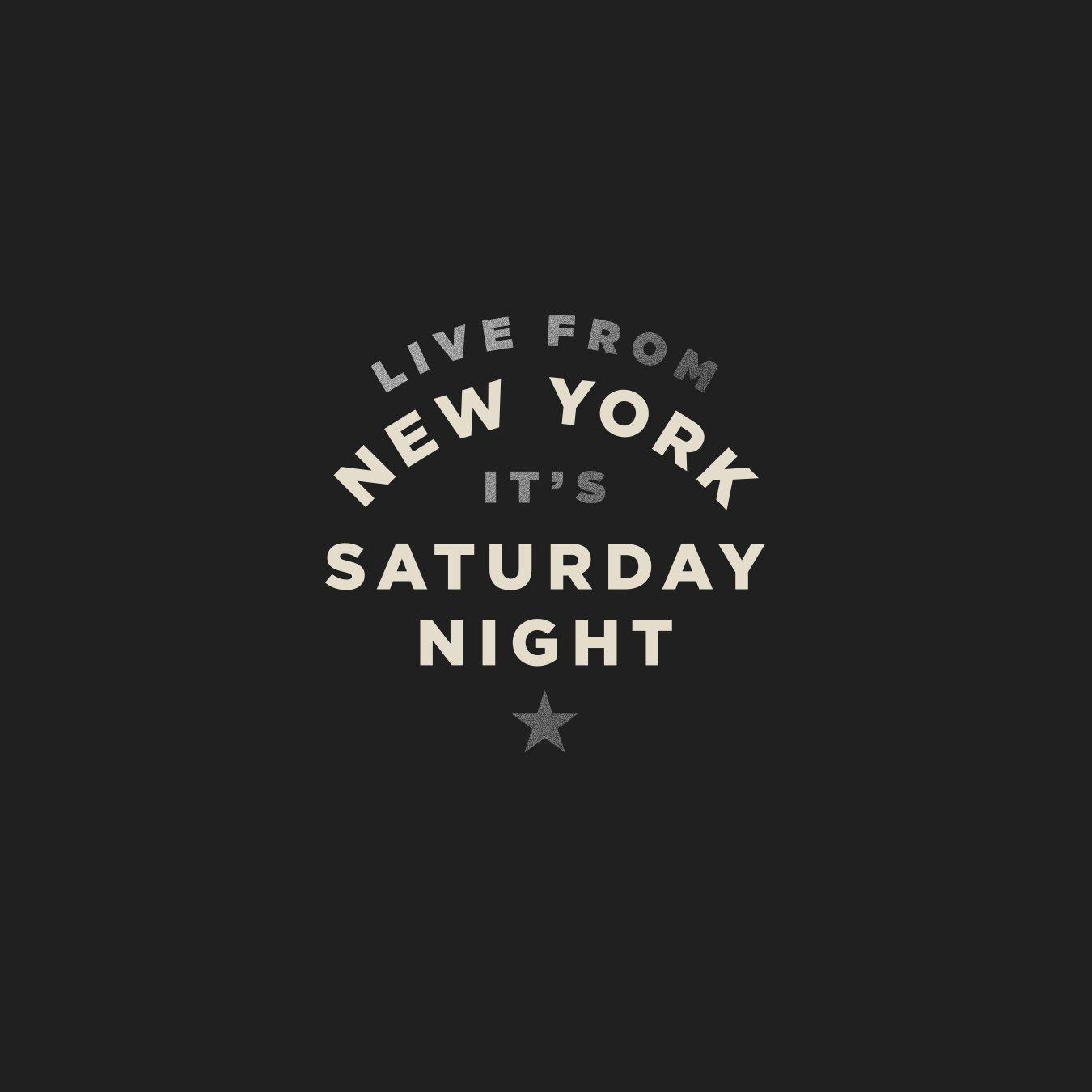 SNL Live From New York Logo 2