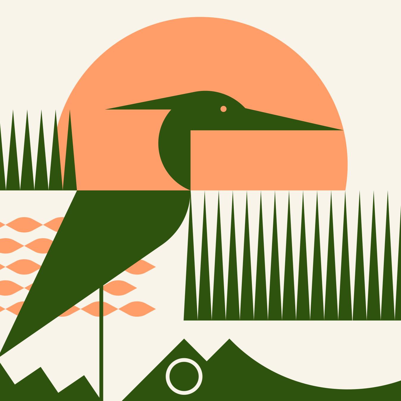 239 Flies Heron and Alligator Illustration