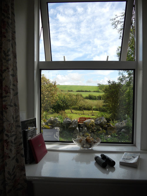 Burnside holiday cottage to let Galloway, wildlife spotting.jpg