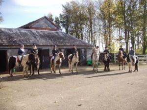 glorious galloway horse riding at kirkclaugh equestrian.jpg