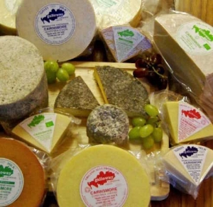 galloway farmhouse cheese.jpg