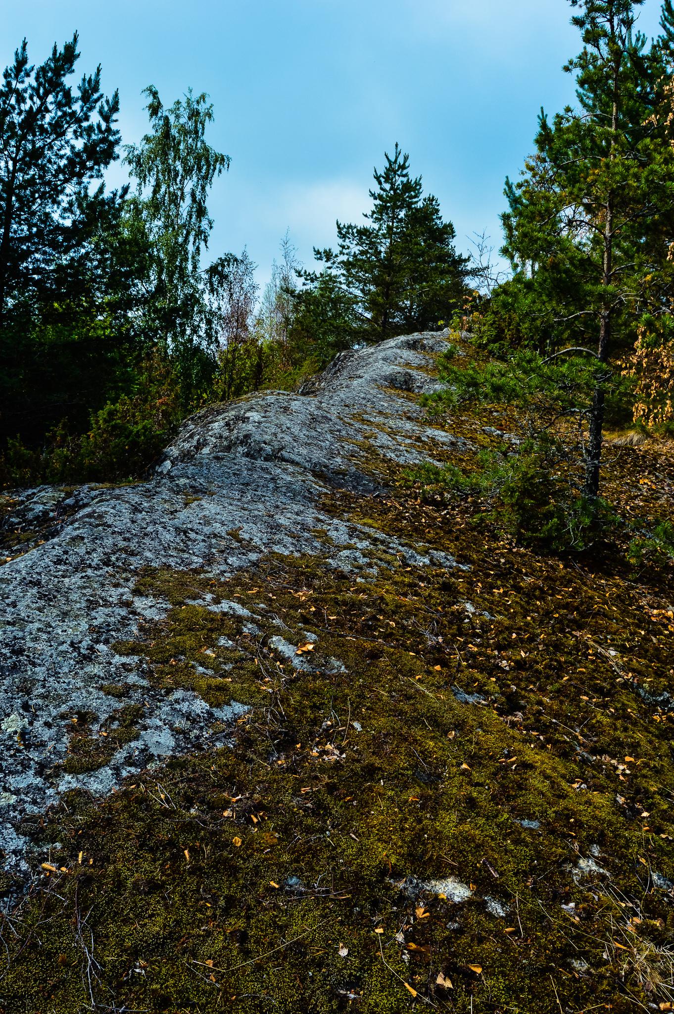Kuivilanvuoren yläosiin pääsee kallion muodostamaa harjannetta pitkin.