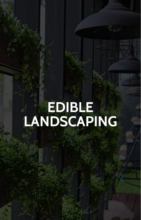 home_ediblelandscape.jpg