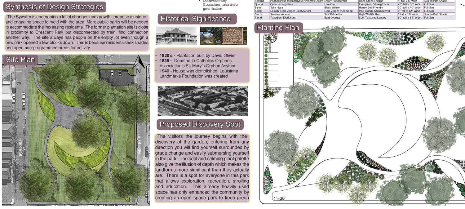 from EducationalPark Botanic Enhancement of New Orleans Public Parks by Taylor Fehmel