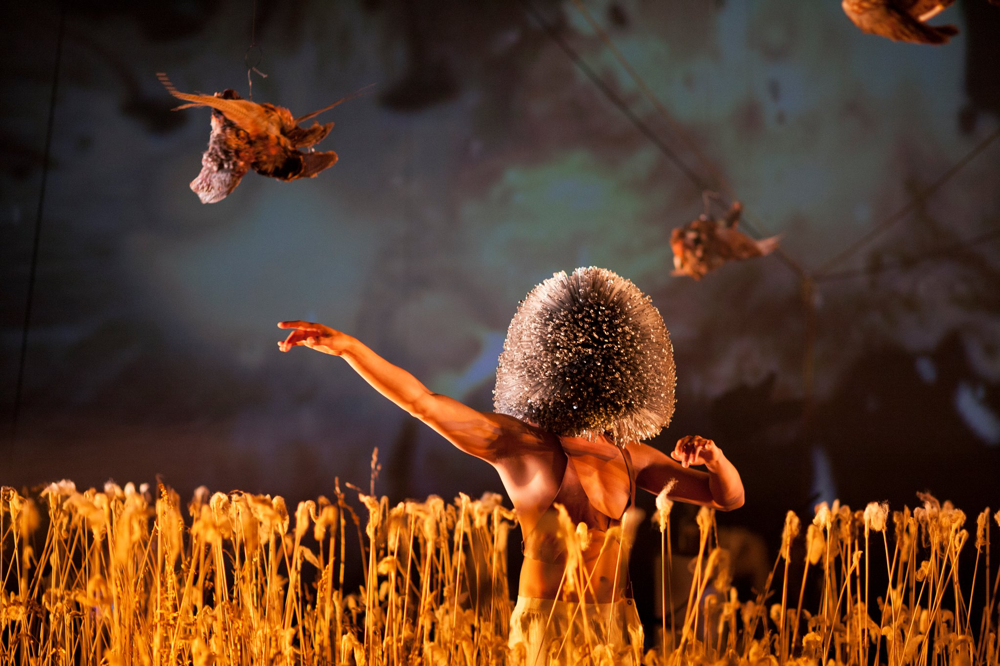 Saint Genet Paradisiacal Rites (Theater)