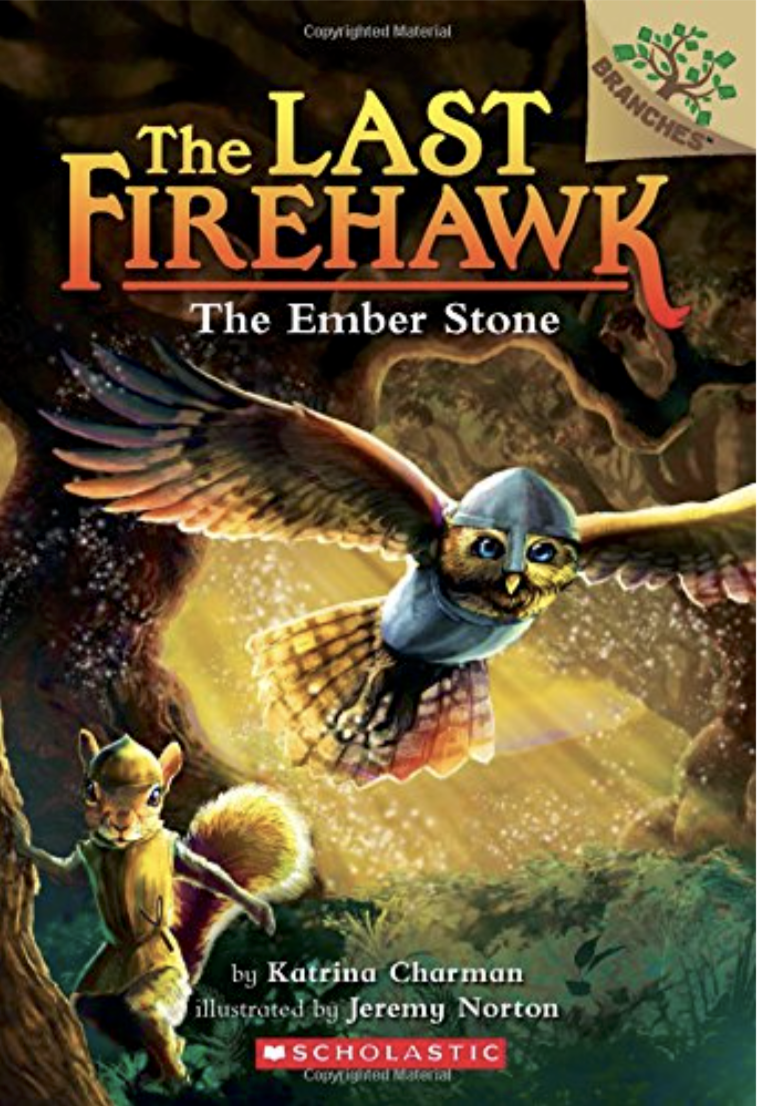 The Last Firehawk: The Ember Stone by Katrina Charman - If your child likes adventure and magic but isn't quite old enough for the likes of the Harry Potter series then they might just get hooked on The Last Firehawk series. This chapter book's main character is a young brave owl who wants to prove himself to his elders as he takes an adventure with three friends to learn about a magical stone.