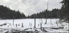 Atware-lake-header-photo.png