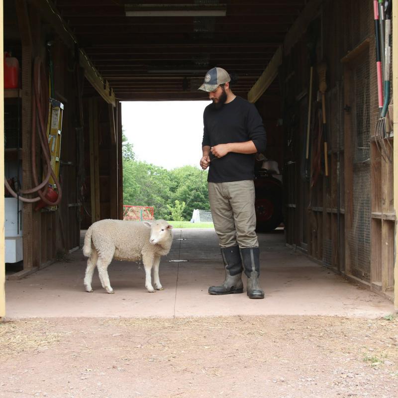 Organic, Local, Pasture-Raised, Sustainable & Regenerative Farming, Farmer Brett Hogancamp