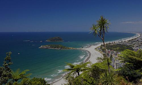 bay of penty -