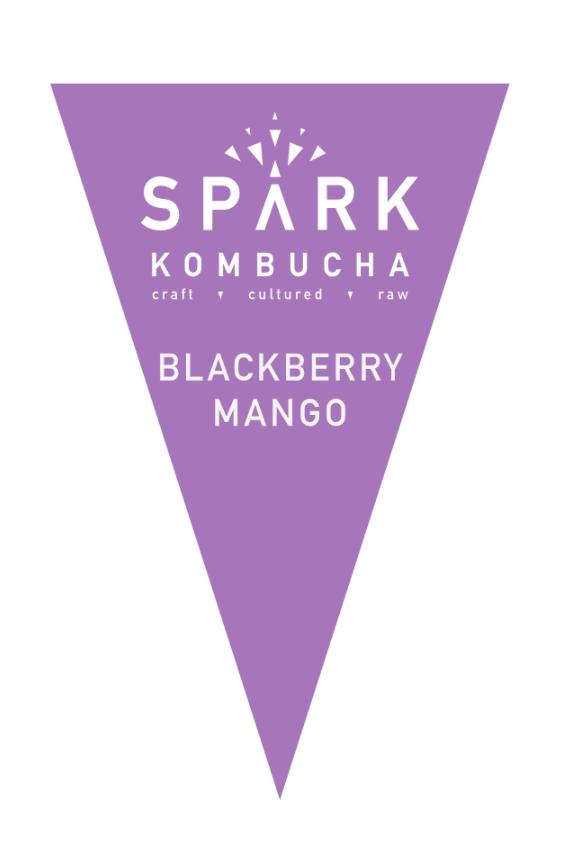 Filtered water, organic white tea, organic black tea, organic kombucha culture, organic cane sugar, organic apple juice, organic mango purée, organic lemon juice, organic blackberry juice.