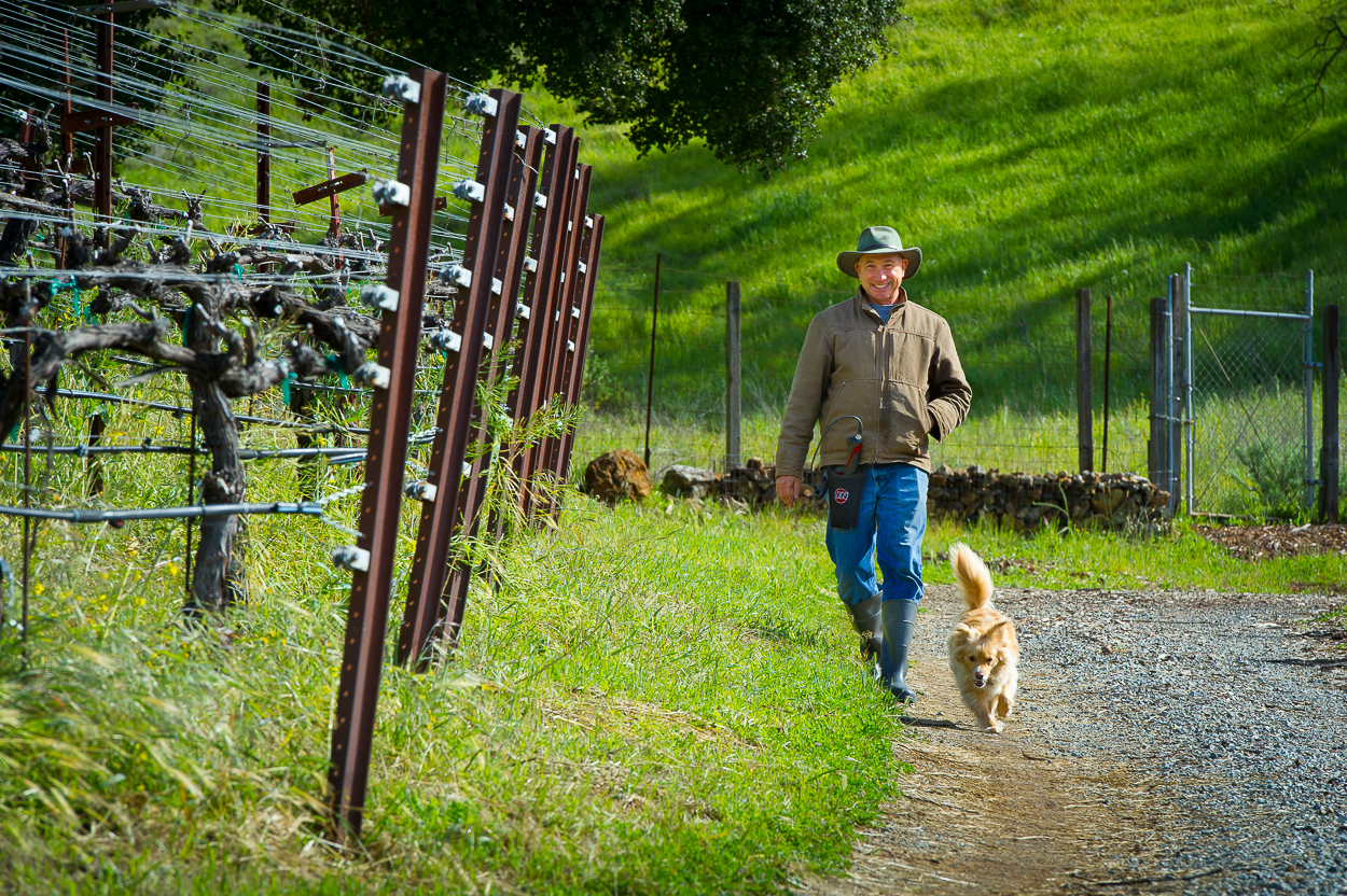 Aver-family-vineyards-gilroy-winery-john-aver-walking-with-dog.jpg