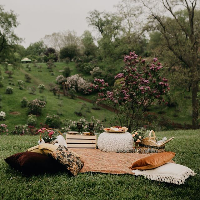 Can it get any dreamier than this?!🙌🏻🧺🌿 Teaming up with @maddiemellottphotography to bring you something really EXCITING✨✨✨ Curated date nights 🦋🌿 Featuring: •A boho styled picnic for 2 with pillows, blankets, goblet cups, plates+ flowers (for you to take home)💐 •A plant based grazing platter🌿 •30 minute photo session with @maddiemellottphotography + a range of as many edited photos as she can get out of your time🦋 •The most unique date in a picturesque location (either let us surprise you or your choice...#HamOnt + surrounding areas) 🌿TAG that special someone that you would LOVE to do this with🌿⬇️⬇️⬇️ (DM or email for inquiries)