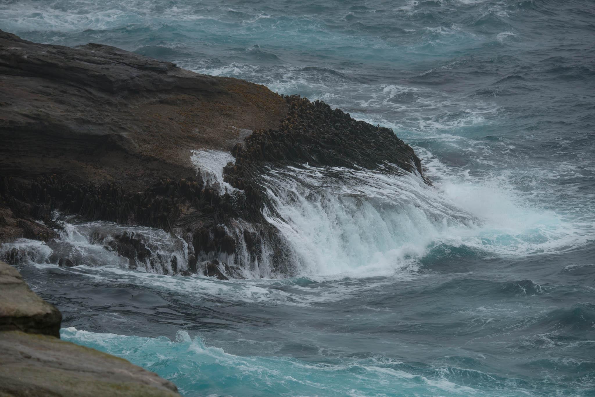 Waves at New Island