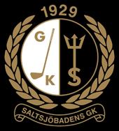logo saltis_preview.png
