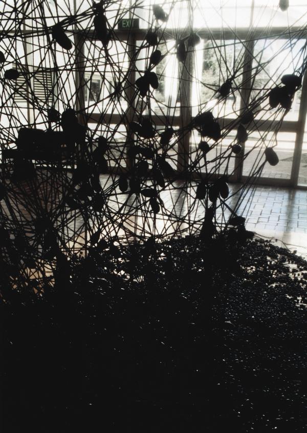 1994_Accumulation_Australia_Photo Ben Stone_2.jpg