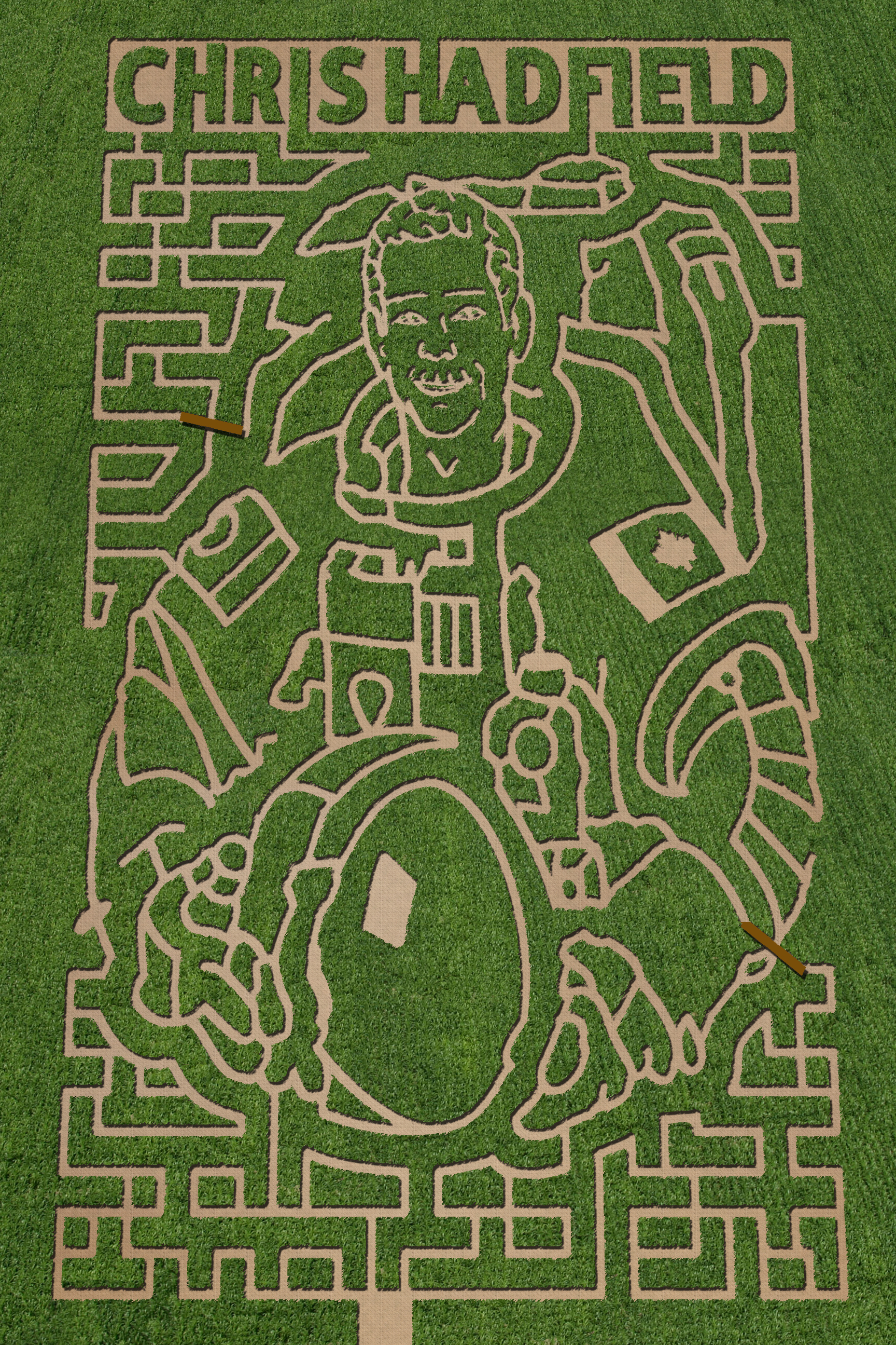 chris hadfield maze 2014.jpg