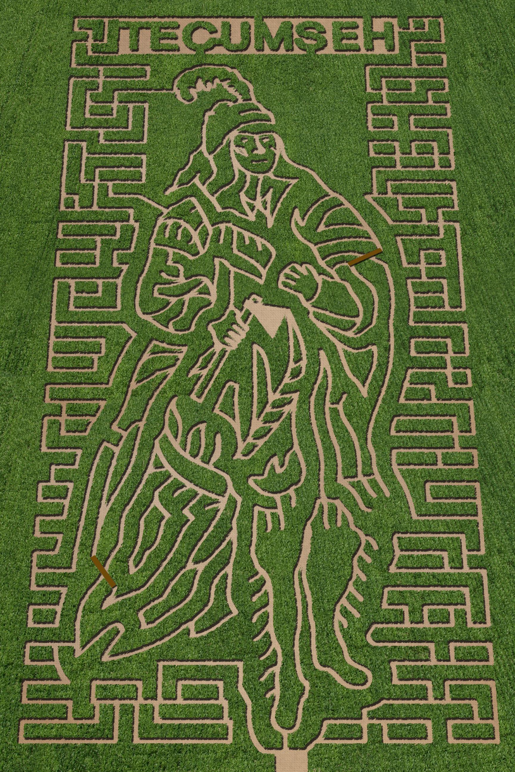 Maze 2012.jpg
