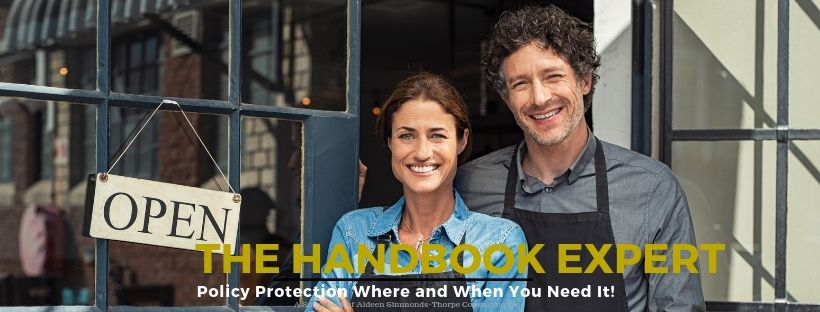 the handbook expert (2).jpg