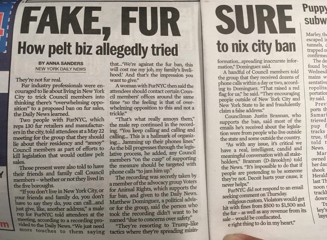 Will the sale of fur products be banned in NYC ? - Apparently, the fur industry hates fake fur but loves fake news
