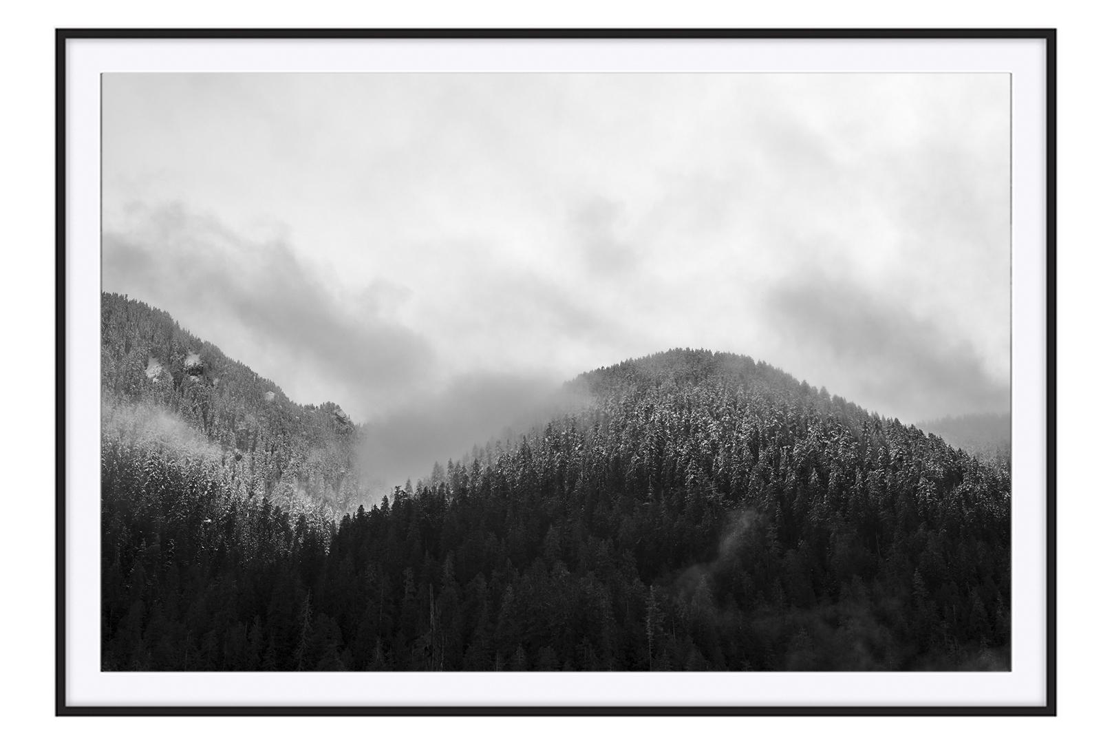 L1003329 framed - black.jpg