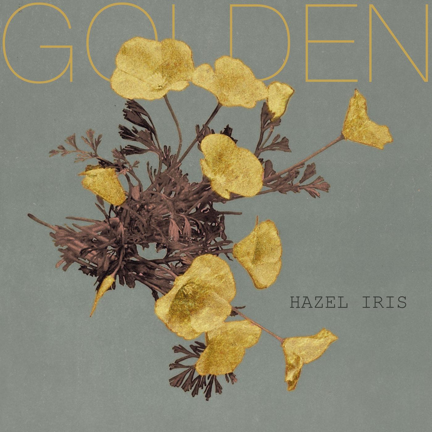 hazel iris golden cover