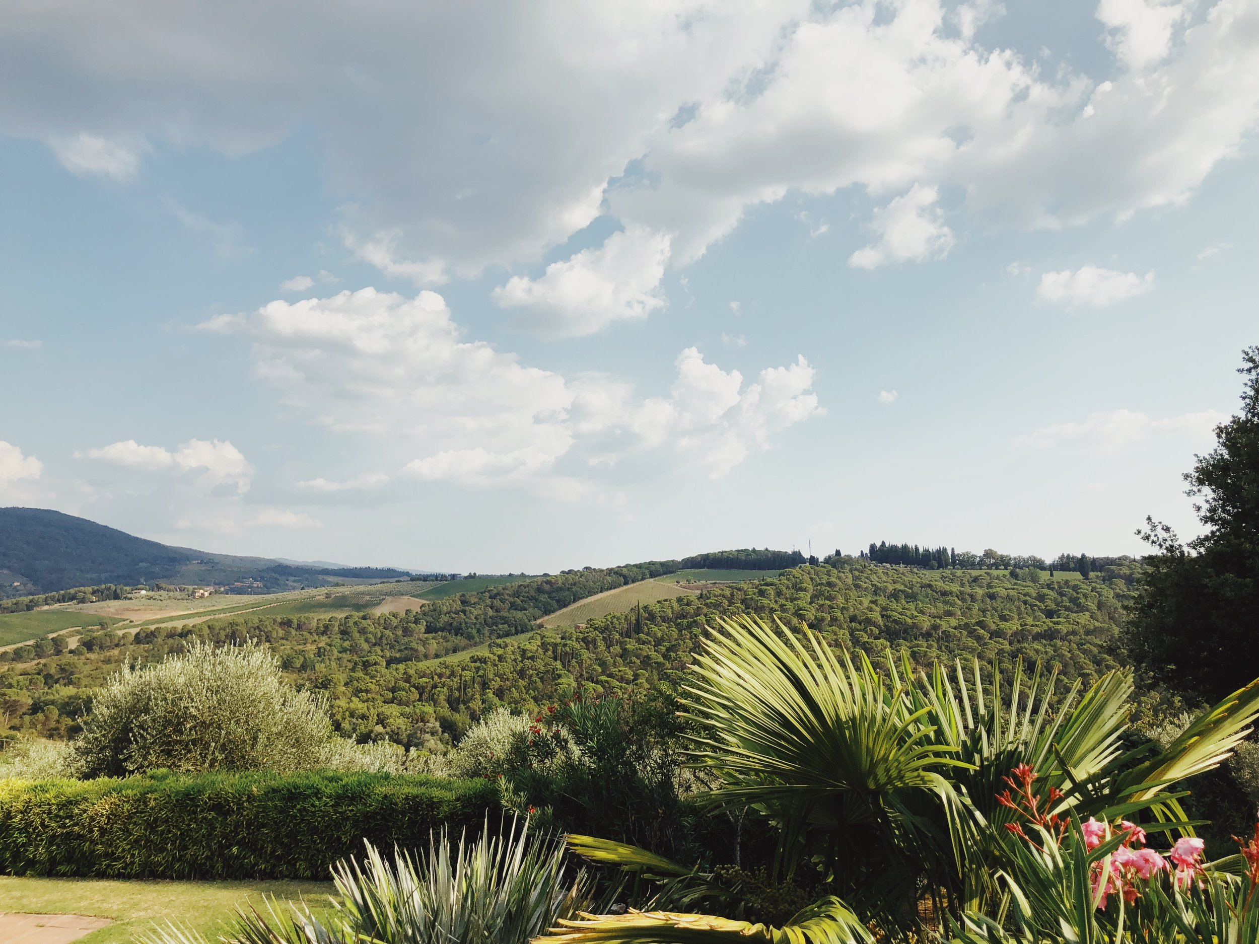 Details & FAQs - Rooted to Thrive: Tuscany