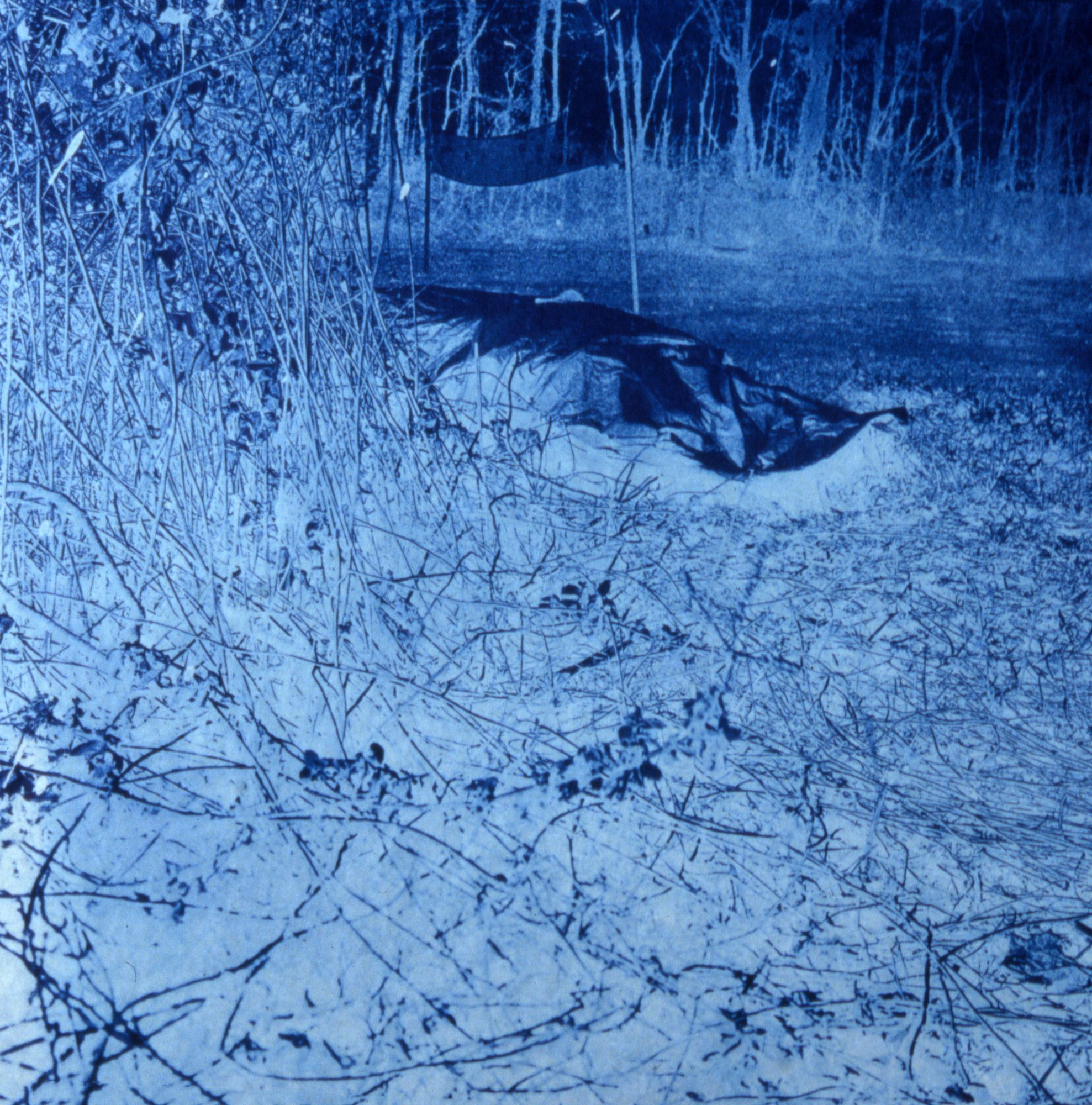 Landscape Blues series