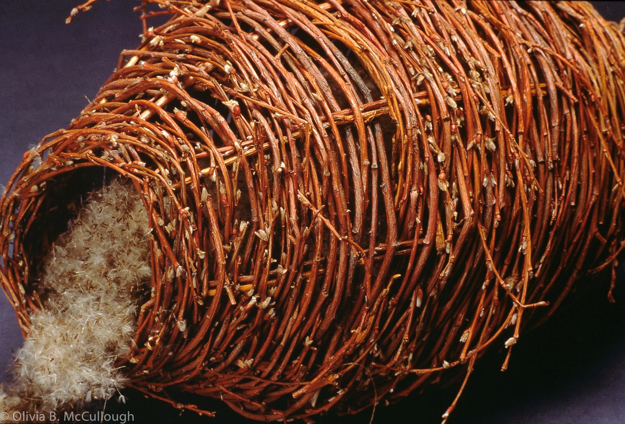 Willow vessel (detail)