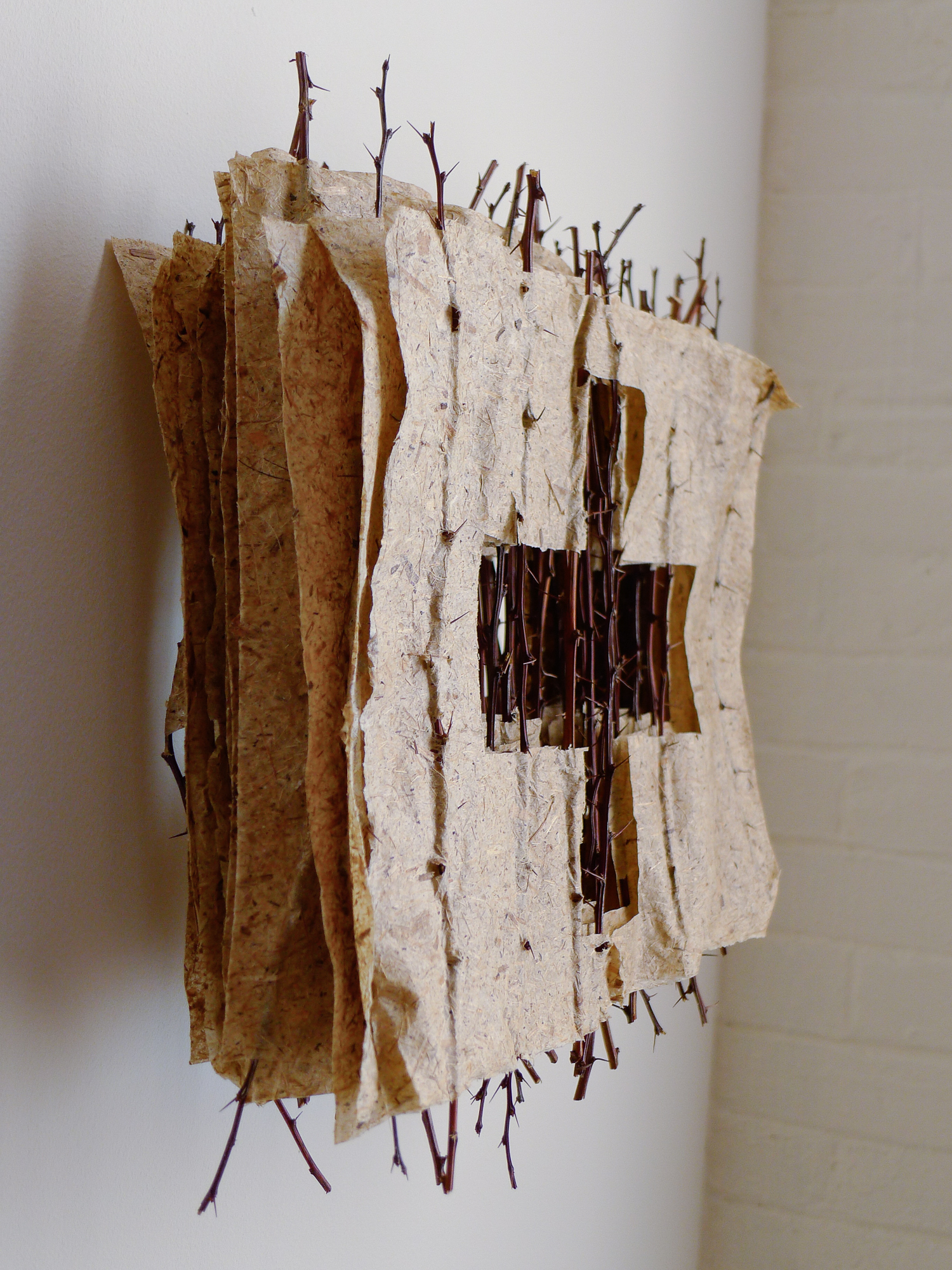 Book of Thorns (stacked)