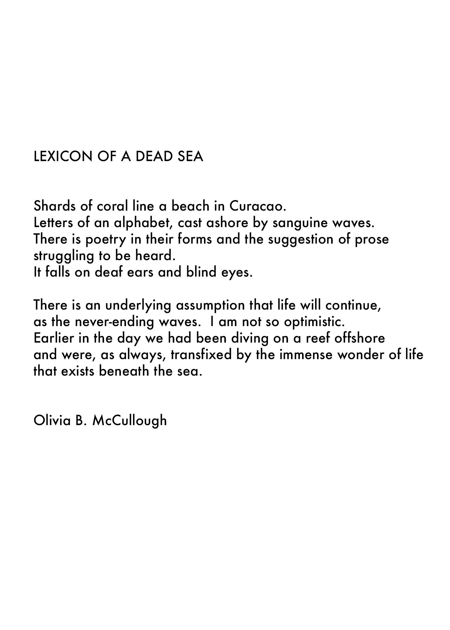 Dead-Sea-Statement.jpg