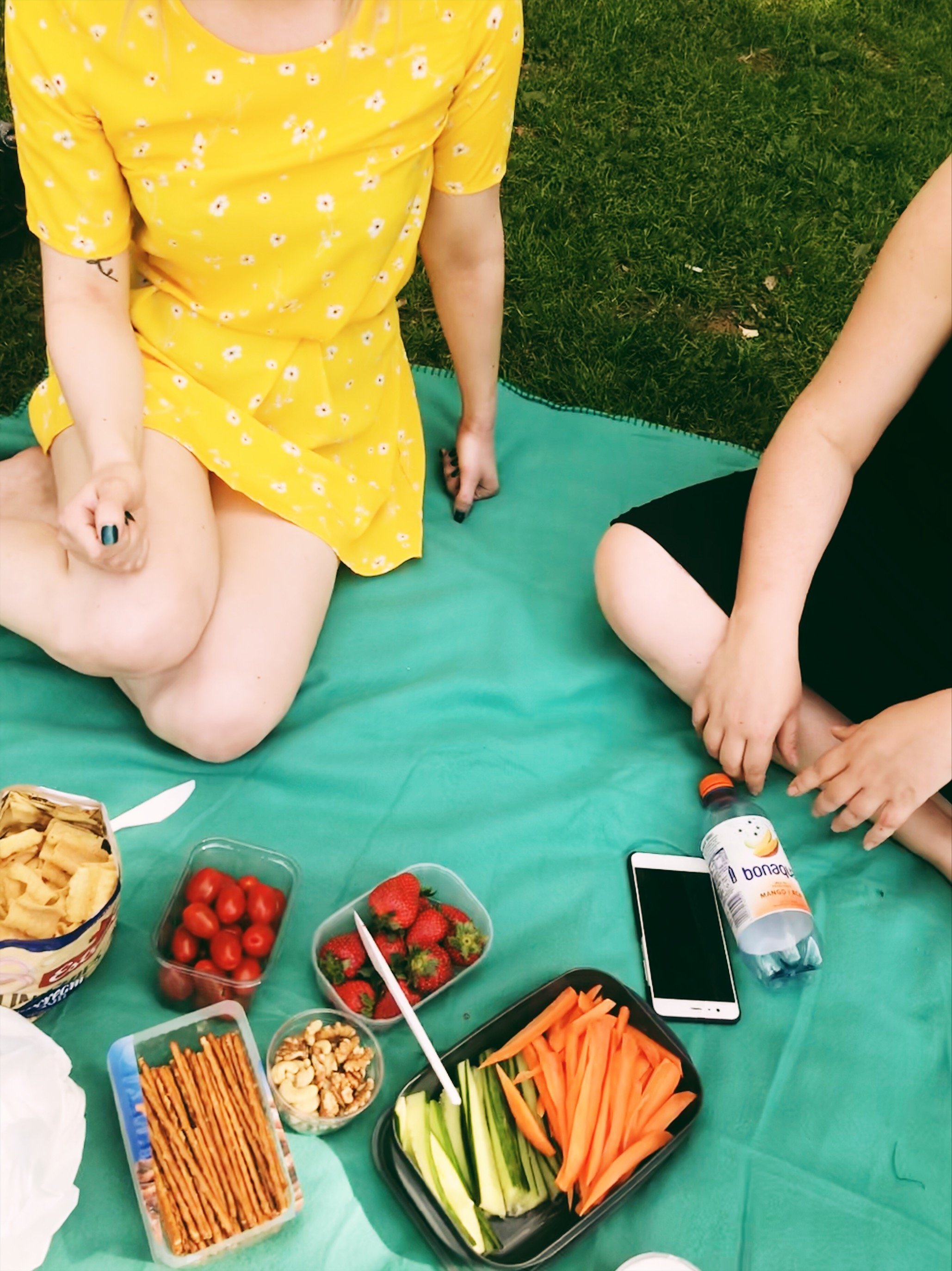 picknick-rålambhovsparken.JPG