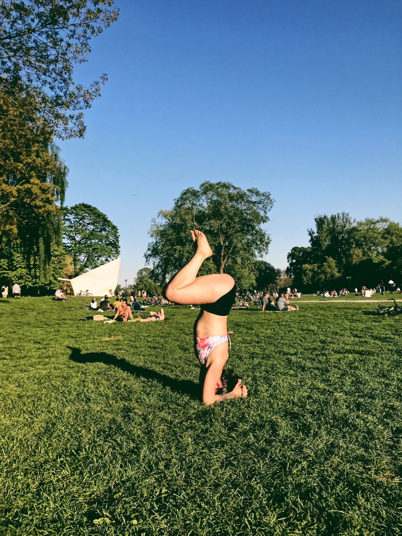 forarmstand-headstand-yoga2.JPG