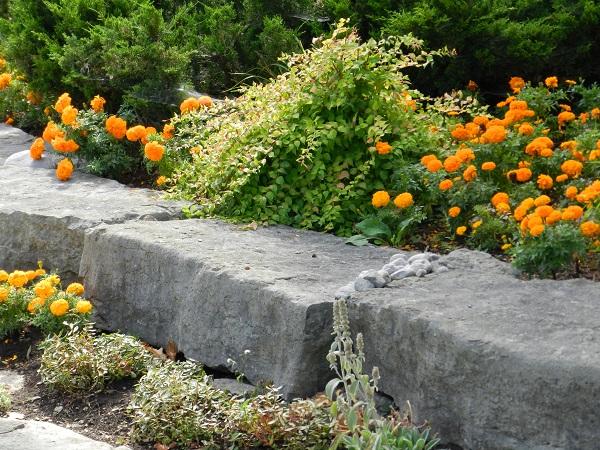 Gardens Beautiful 2014 015.JPG