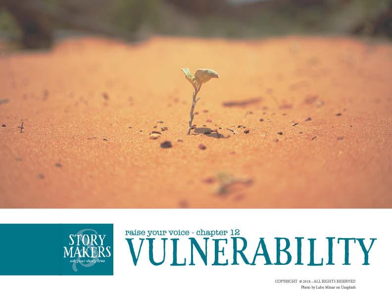Storymakers_vulnerability.jpg