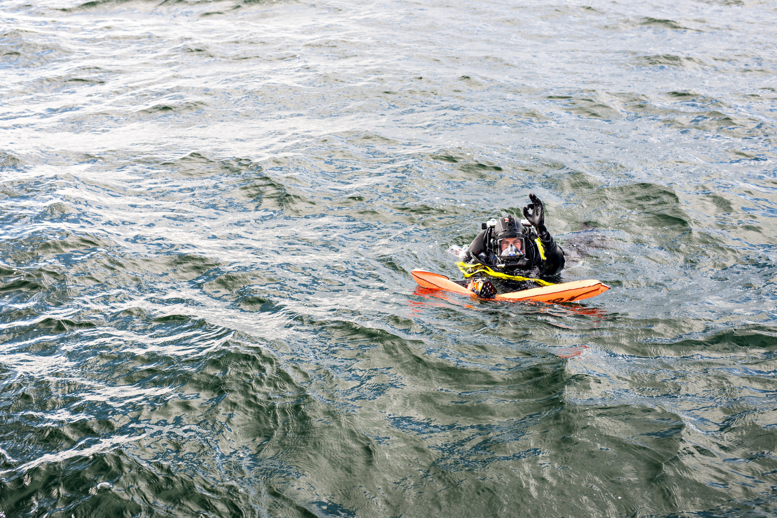 The Living Seas-J.Ferguson-4.jpg