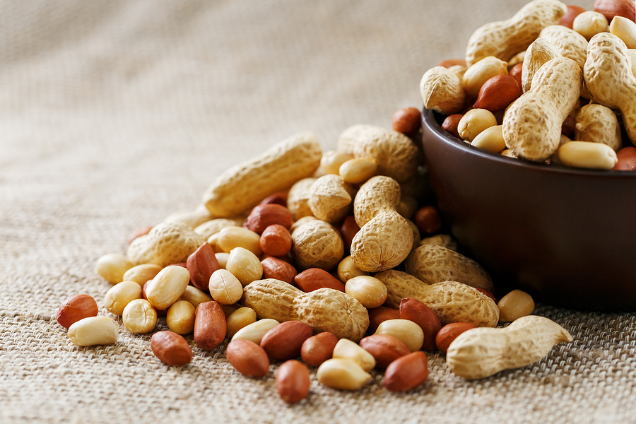 Tasty Tidbits: A History of Virginia Peanuts - Virginia has been growing peanuts since the earliest European settlers arrived in the region. Originating in South America, peanuts arrived in North America via a circuitous route through Europe and Virginia grew its first commercial peanut crops in Sussex County in the 1840s. Today, Virginia is still a peanut powerhouse, known for its large and flavorful peanuts. You'll find the majority of its crops in the southeast area of the Commonwealth. Image from The Virginia Peanut Company