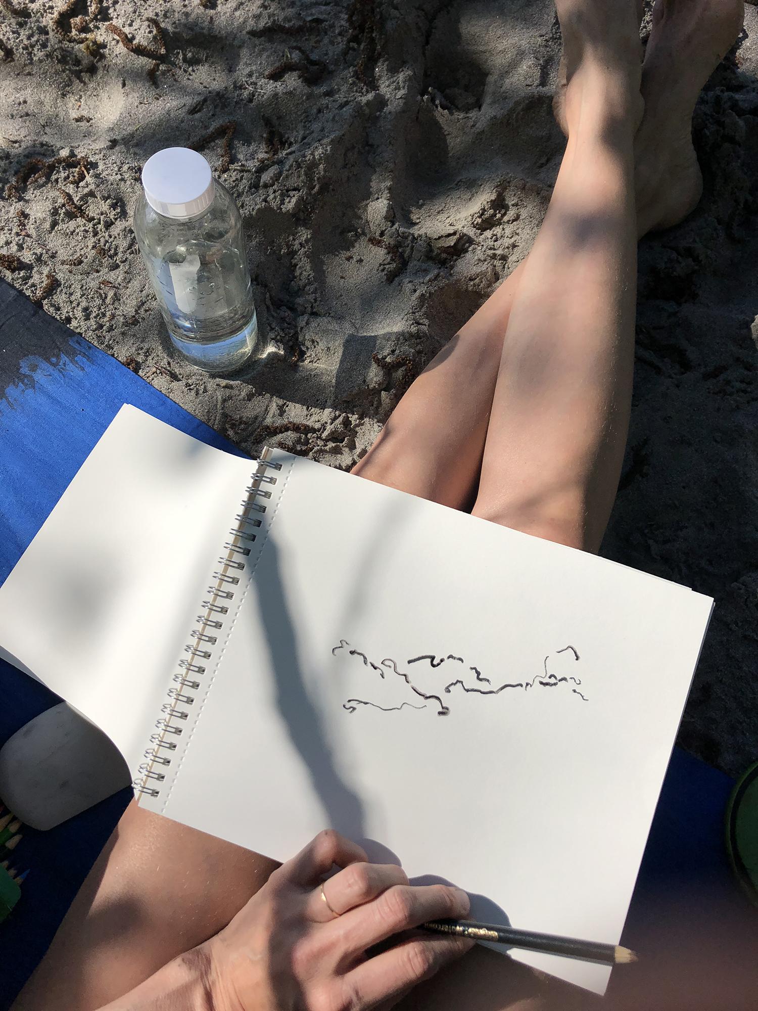 jay-paganini_sauk-river_line-drawing02sm.jpg