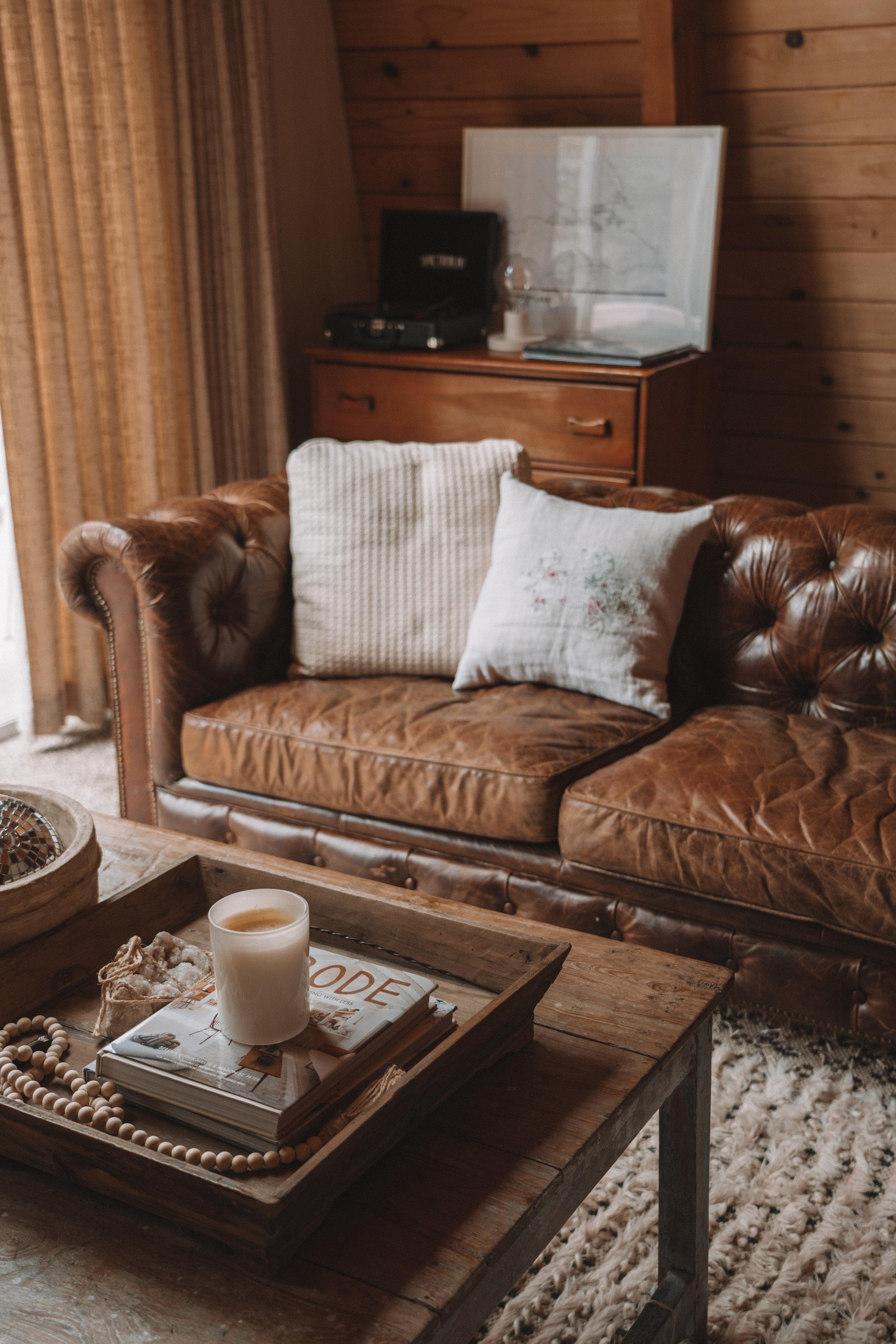 Cozy Cabin Living Room.jpg