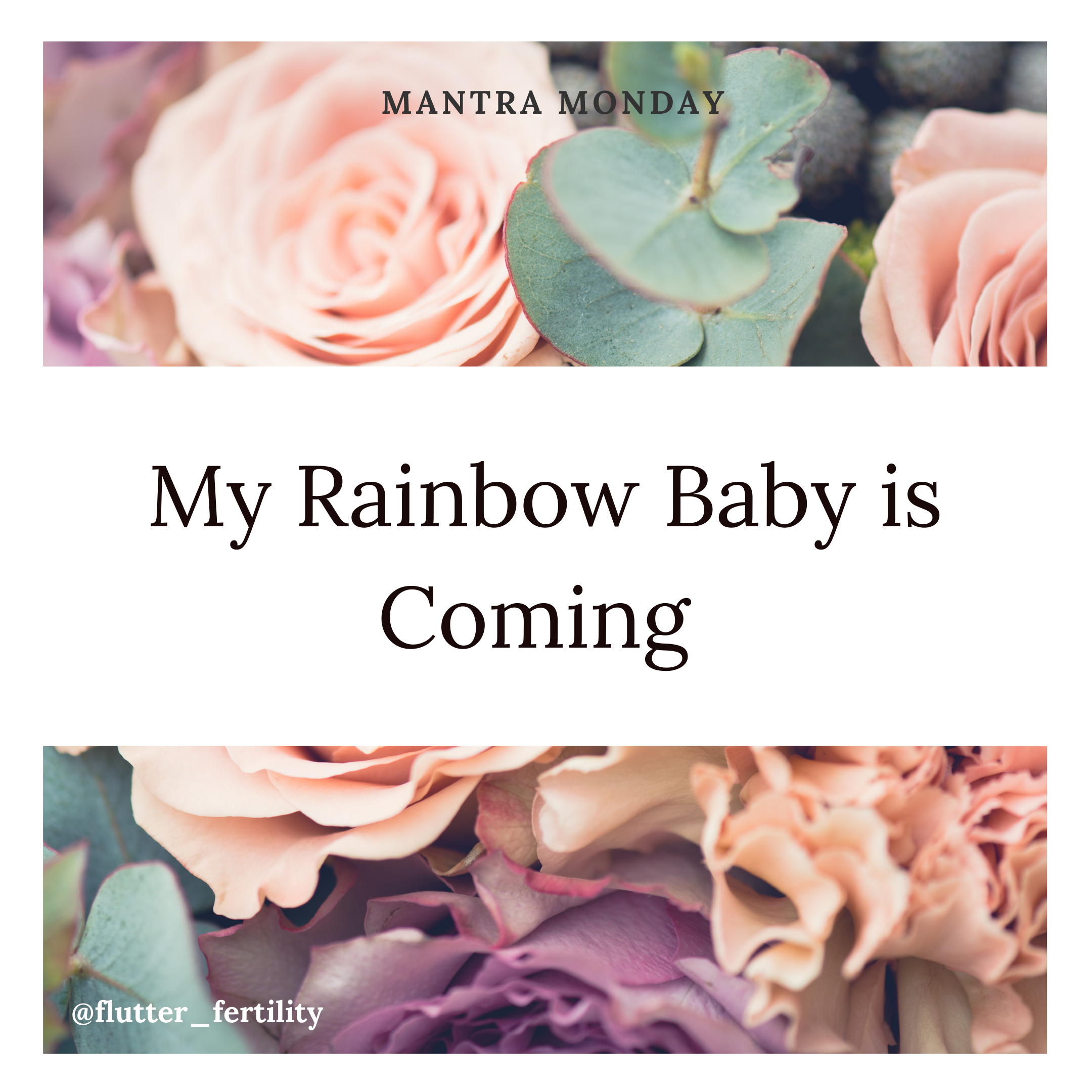 My Rainbow Baby is Coming.png