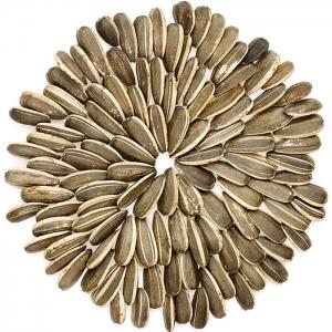 seedslast.jpg