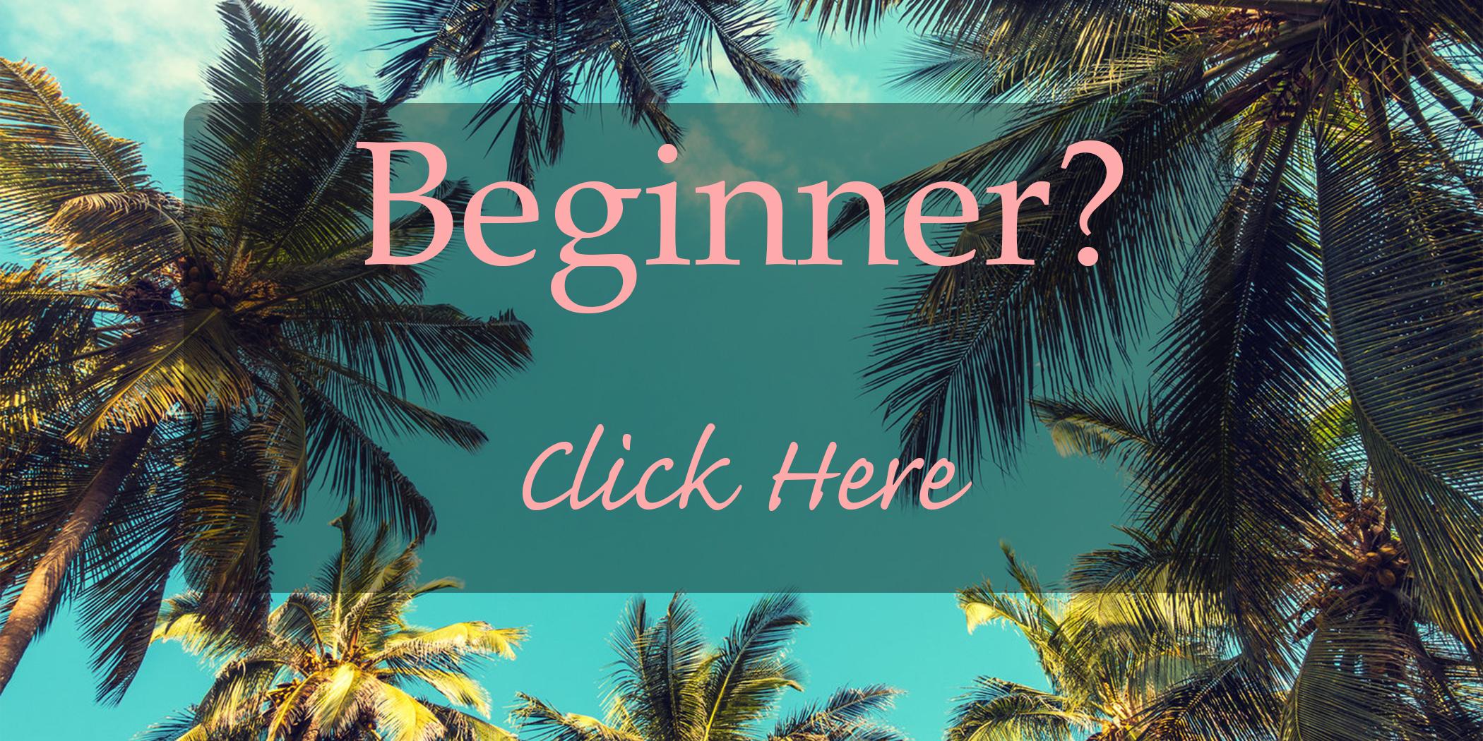 beginner.jpg