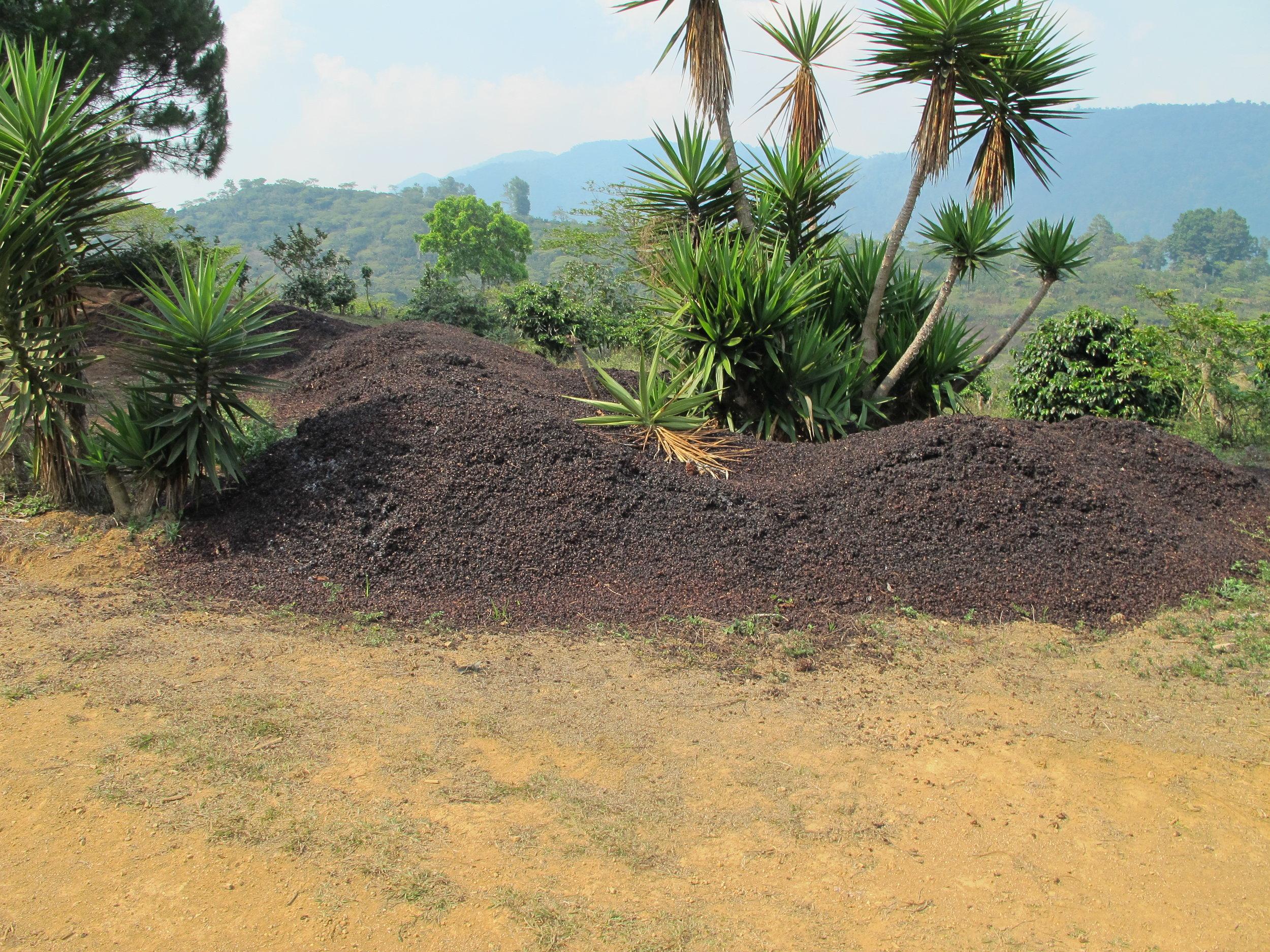 Aguas Mieles de la pulpa de cafe que se contamina muchas cuencas.